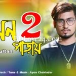 Tor Mon Paray 2 By Mahdi Sultan Full Mp3 Song Download